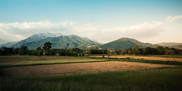 Paesaggio-Picogna-x_web