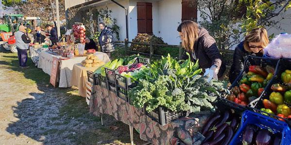 ritorna-il-mercato-contadino