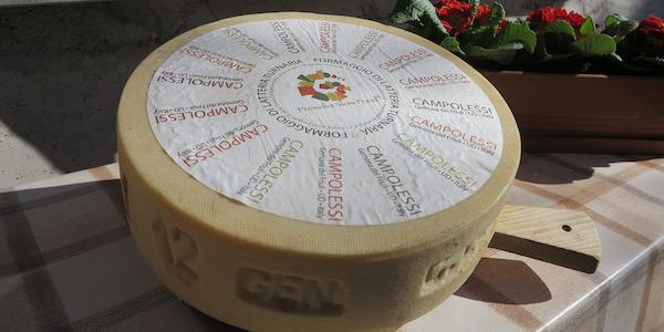 CULTURA-formaggio-campolessiWEB